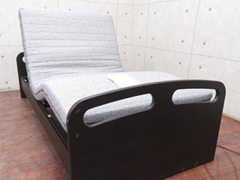 ライズ 2M DBR 電動リクライニングベッド